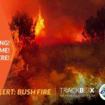 Local Alert – FIRE: BUSHVELD